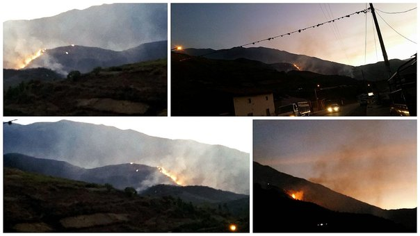 Incendio forestal avanza incontrolable en Cusco