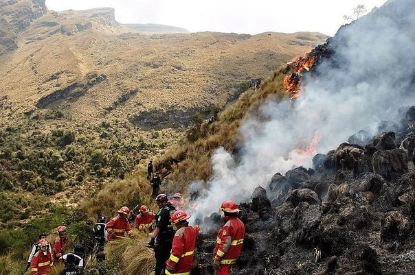 Cajamarca: Se registran 32 incendios forestales