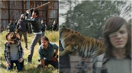The Walking Dead: Así fue grabada la espectacular escena del tigre Shiva (VIDEO)