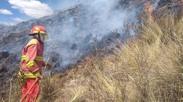 Cusco: Incendios forestales en Calca y Canchis movilizan a bomberos (VIDEO)